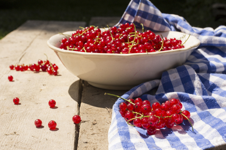 Bowl of redcurrant with blue squared cloth on wooden table in direct sunlight