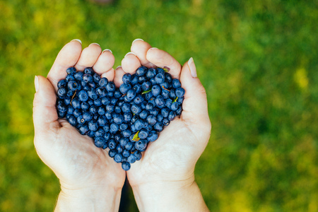 Hands full of natural forrest Blueberries forming heart. Top view, shot on a green grass during beautiful sunny day