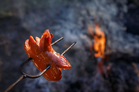 Czech Traditional barbecue sausages on a stick, roasted on a campfire - typical czech outdoor activity with friends or family 版權商用圖片