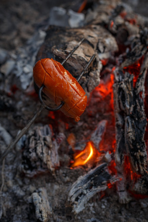 Czech Traditional barbecue sausages on a stick, roasted on a campfire - typical czech outdoor activity with friends or family Stock Photo