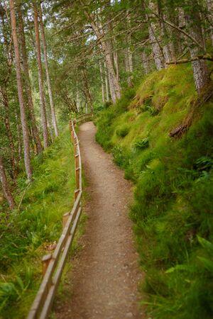 Hiking path leading along the Corrieshalloch Gorge National Nature Reservation near Braemore, Garve, Scotland, UK 版權商用圖片