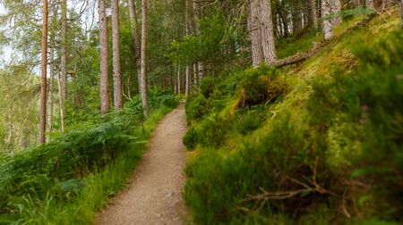 Hiking path leading along the Corrieshalloch Gorge National Nature Reservation near Braemore, Garve, Scotland, UK Imagens
