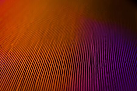 Close up macro detail on music vinyl grooves of a yellow single 7 inch record played at 45 rpm Stock Photo
