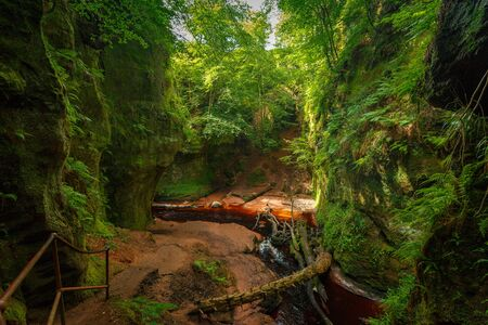 Inside of the Devil's Pulpit gorge, with beautiful running water and red river bed with walk in the water towards a waterfall, near Glasgow, Scotland, UK Reklamní fotografie