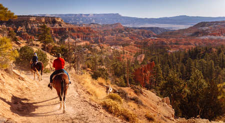 Bryce National Park, Utah, USA - October 14, 2019: Horse Trail with frequent tourist horse rides at Sunrise Point, Bryce National Park, Utah, USA