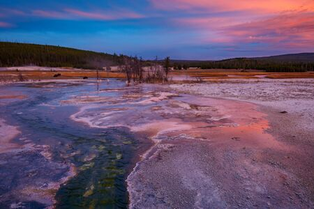 Biscuit basin with purple reflection on a steamy water and beautiful colorful sunset. Yellowstone, Wyoming, USA