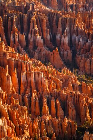 Detail on hoodoos - unique rock formations from sandstone made by geological erosion. Taken during sunrise in Bryce National Park, Utah, USA
