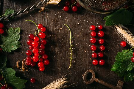 Table top view bunch of red currant, separated / disassembled berries and stem laying on a dark wooden table, surrounded by leaves and other objects