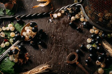 Top view of an empty copy space surrounded white currant berries mixed with black currant on a dark wooden table
