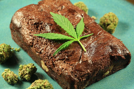 medicinal: Pot Brownie 7. A marijuana leaf on a marijuana brownie on a blue plate with buds.