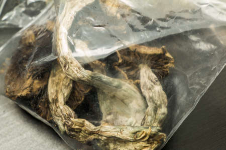 hallucinogen: Bag of Shrooms. A bag of Psilocybin mushrooms, also known as Magic Mushrooms, a psychedelic drug that causes hallucinations which has been used by humans for thousands of years.