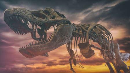 tyrannosaurus rex: Tyrannosaurus Rex Dinosaur Fossil Extinction. A tyrannosaurus rex dinosaur fossil skull against a background of dark gloomy skies, extinction event.