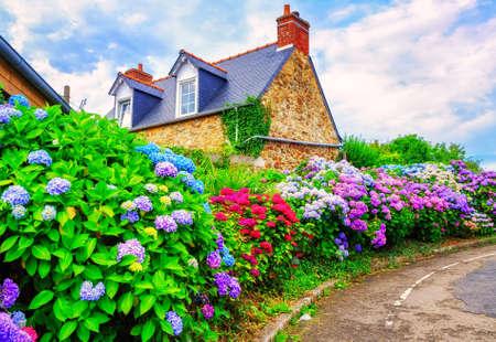 case colorate: Colorful Ortensie fiori in un piccolo villaggio, Bretagna, Francia Editoriali