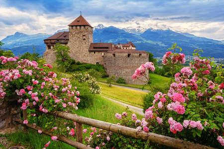 Vaduz castle, Liechtenstein, in the Alps mountains, with beautiful blooming pink rose flowers 新聞圖片