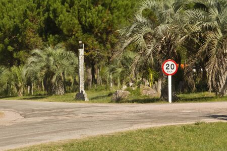 kmh: Speed limit sign kmh, road and palms.