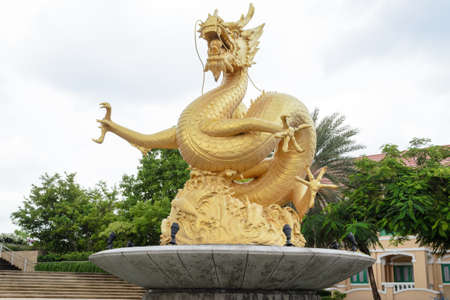 naga china: Golden dragon statue,Phuket,Thailand
