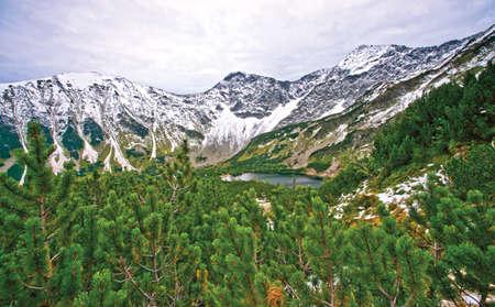 Tarn in der Hohen Tatra Standard-Bild - 94660835