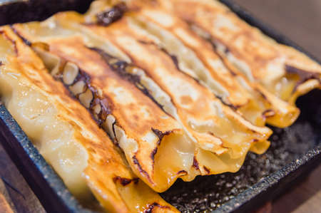 potstickers: Square Gyoza or Potstickers Close-up
