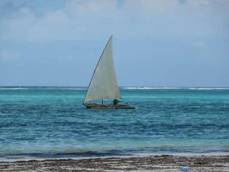 zanzibar: Visser in Zanzibar Stockfoto