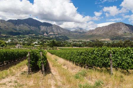 Winelands Franschhoek, Capetown, South Africa