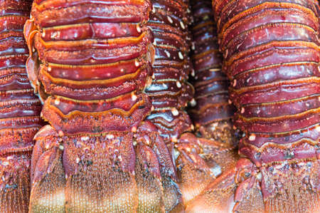 upperdeck view: Lobster tails at a fish market. Stock Photo