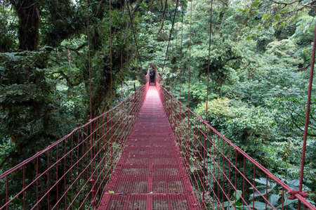 A hanging bridge in the monteverde cloudforest, Costa Rica photo