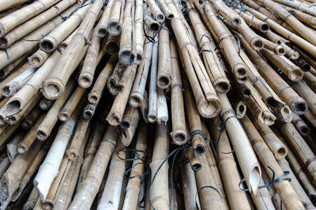 scaffolds: Close up of a pile of bamboo that are still being used in Hong Kong to build large scaffolds during building maintenance