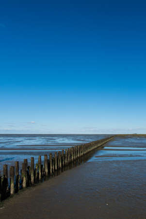 Coastal feature on dutch mud flats photo