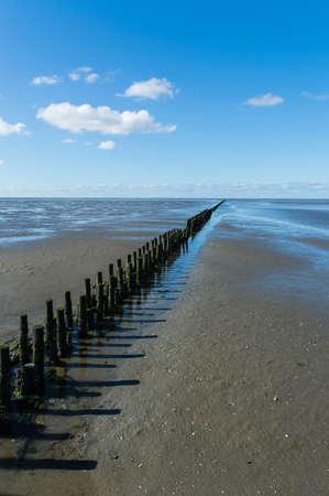 coastal feature: Coastal feature on dutch mud flats