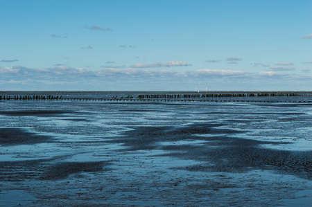 coastal feature: Coastal Feature of the dutch mud flats Stock Photo