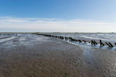Coastal Feature of the dutch mud flats photo