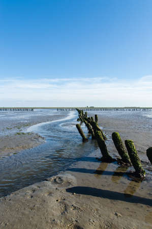 german north sea region: Coastal Feature of the dutch mud flats Stock Photo