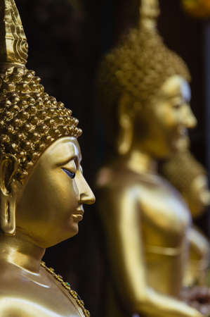 Row of buddhas in Bangkok photo