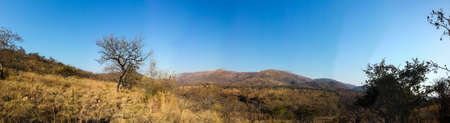 Panorama Landscape view of Loskop Nature Reserve,South Africa