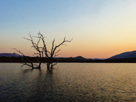 wildlife reserve: DuskSunset at Loskop Natural Wildlife Reserve seen from the Olifants River, South Africa