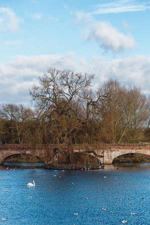 avon: Bridge over the Avon, Stratford on Avon, England