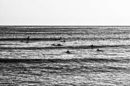 surfers: Surfers waiting in a calm sea Stock Photo