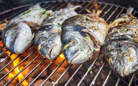 Dorade fishes on the barbecue Foto de archivo