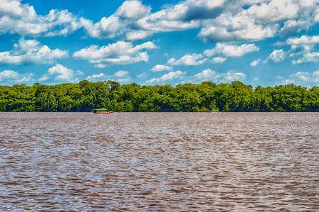 Tropical Rainforest in Suriname, South America with small boat Foto de archivo