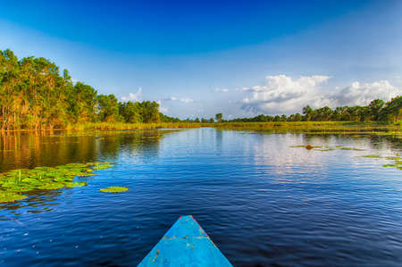 Travelling by boat through Matapica Swamps in Suriname,South America
