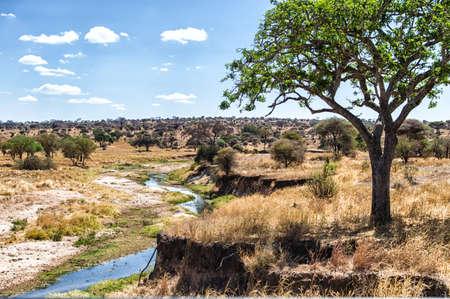 tanzania: Mara River looking into Tanzania Stock Photo