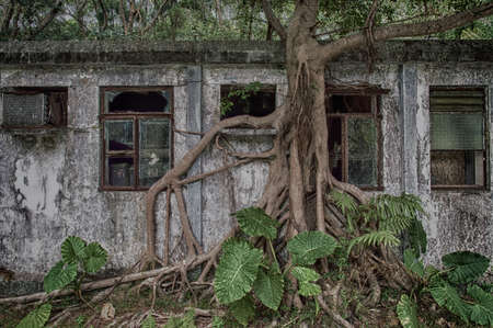 man made structure: An old weathered abandon residence in the forests on Lantau island,Hong Kong Stock Photo