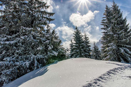 polar climate: Beautiful mountain landscape in the Austrian Alps. Stock Photo
