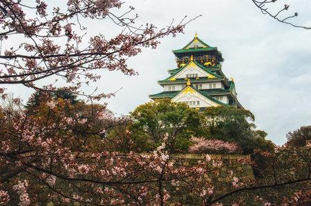 osaka castle: Osaka castle in Japan framed by beautiful cherry blossoms