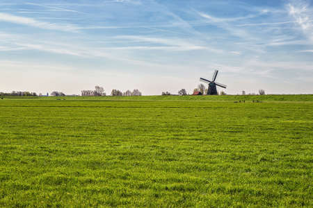 dutch culture: beautiful green meadow with blue sky and dutch windmill, The netherlands