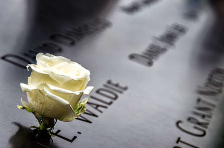 New York City - May 13, 2016: A single white rose left in tribute amongst the inscribed victims names surrounding the 911 Memorial south tower footprint
