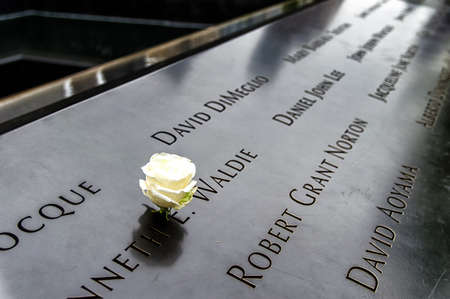 inscribed: New York City - May 13, 2016: A single white rose left in tribute amongst the inscribed victims names surrounding the 911 Memorial south tower footprint