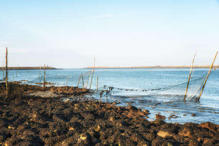 Fishing poles and nets as seen from the coast of Den Oever,The Netherlands Stock Photo