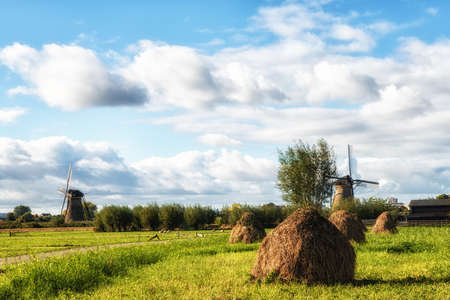 Summer field with haystacks and windmills, Kinderdijk The Netherlands