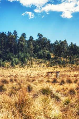 Pastoral landscape at michoacan area, Mexico Stock Photo
